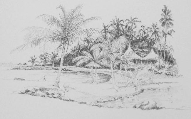 dessin tahiti